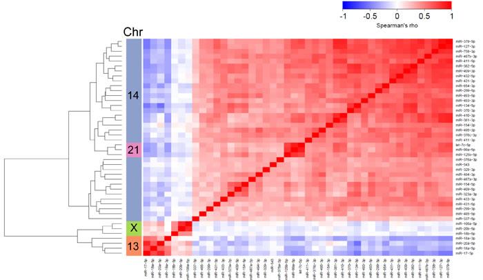 miRNA expression correlations based on TCGA breast cancer data (primary tumors).
