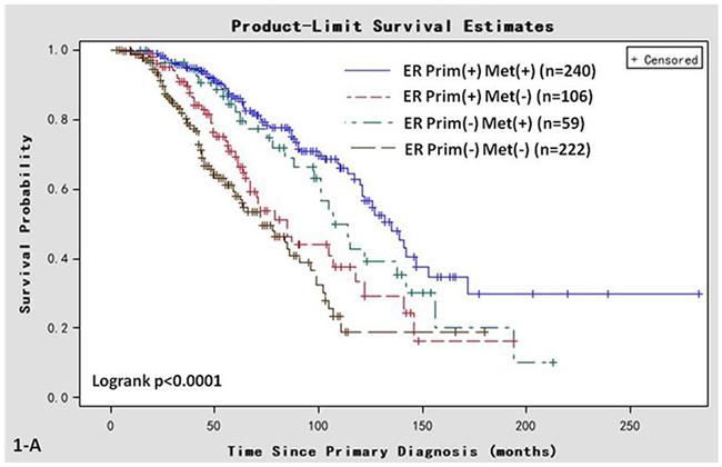 Kaplan-Meier survival curves in women of various ER status subtypes.