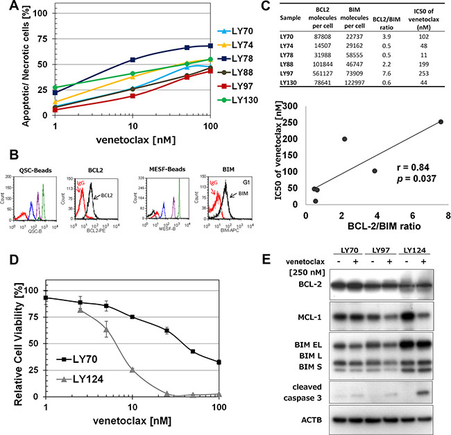 Venetoclax induces proliferation inhibition and apoptosis in t(14;18) positive cells.