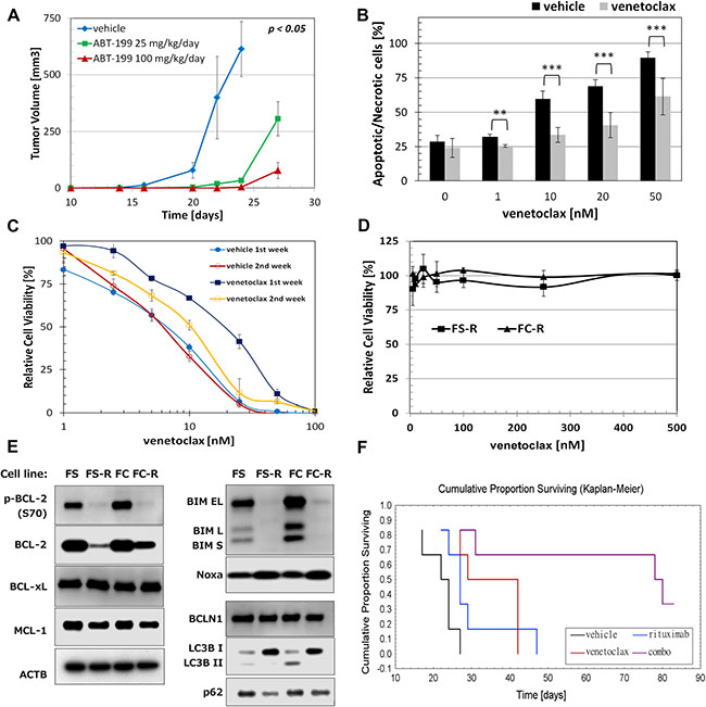 Acquired resistance to venetoclax in FL cells.