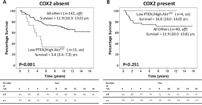 Peri-nuclear COX-2 stratifies CRC patients with an active intra-tumour PTEN/Akt pathway.