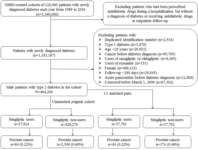 Flowchart showing the procedures followed in creating the unmatched original cohort of male patients with type 2 diabetes mellitus and the 1:1 matched pairs used in the study.
