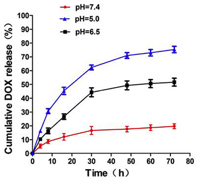 pH-dependent release of DOX molecules from MSN/COOH/TAT-FITC/Cit/YSA-BHQ1.