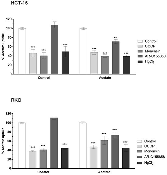 Inhibition of acetate (1 mM) uptake in HCT-15 and RKO cell lines treated with IC30 of acetate for 48h with CCCP (100 μM), Monensin (100 μM), AR-C155858 (1 μM) and HgCl2 (100 μM).