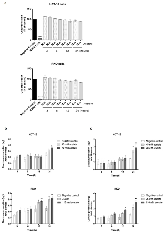 Acetate induces metabolic changes in CRC cells.