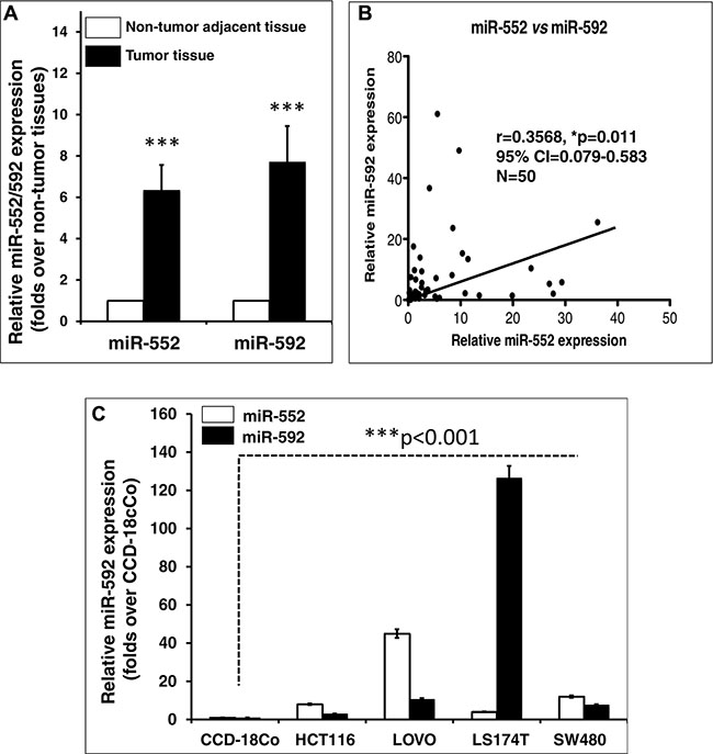Aberrant miR-552 and miR-592 transcripts in colorectal cancer tissues and cell lines.