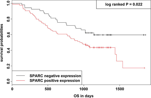 KM survival curve and log-rank test for patients classified as showing either positive or negative SPARC expression in GC.