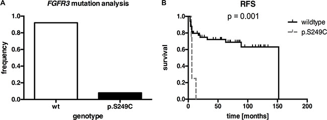 FGFR3 mutation analysis of our squamous differentiated bladder cancer samples (n = 71).