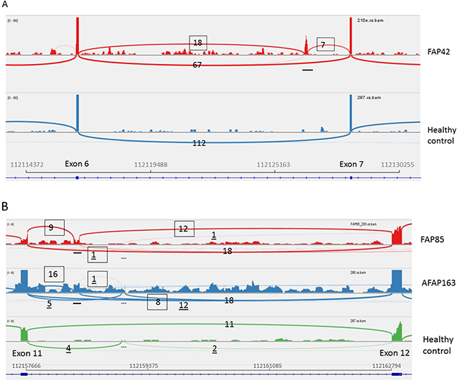 RNA-seq (42, 85-2, and 163).