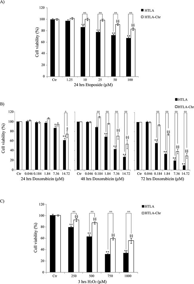 HTLA-Chr cells develop a multi-drug resistant phenotype.