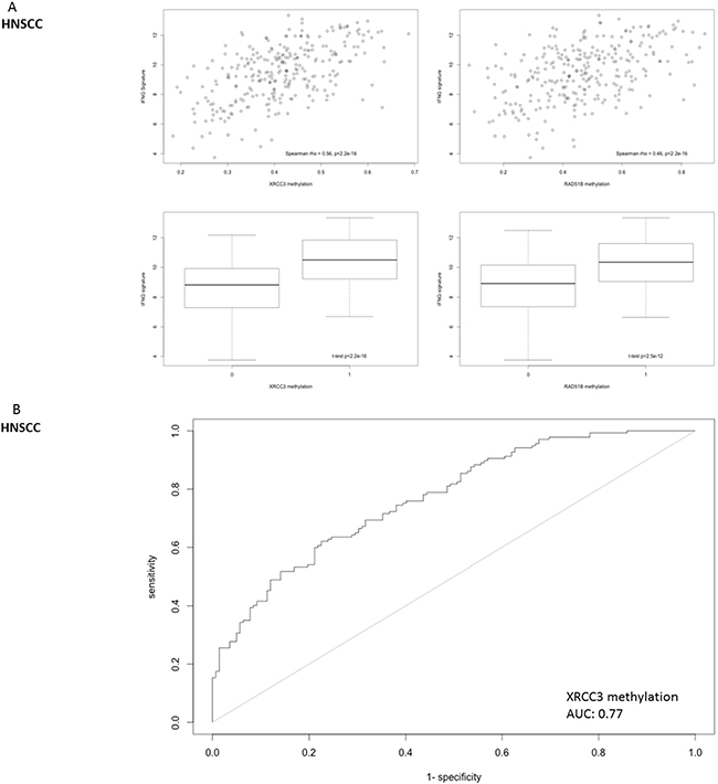Correlation of DNA repair gene methylation with the expression of a 6-gene IFNG signature (consisting of STAT1, HLA-DRA, IFNG, IDO1, CXCL9 and CXCL10) that has been identified as a predictive biomarker for PD-1 inhibitor efficacy in head and neck cancer.
