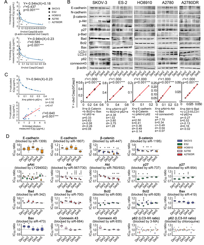 Chemoresistance-related signaling pathway contributions to variation in IC50 data.