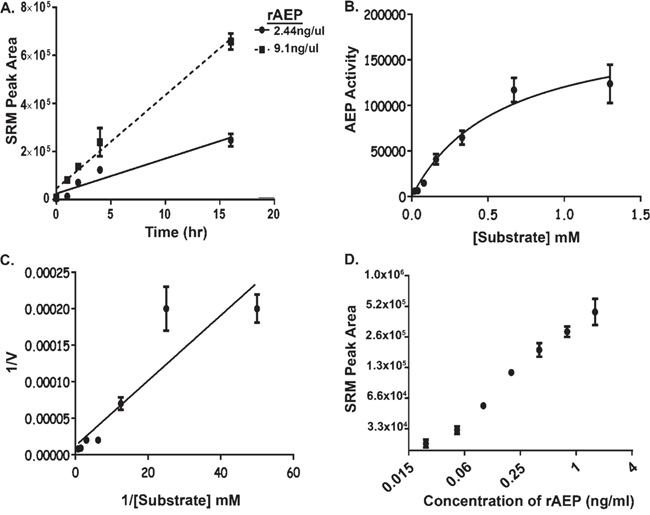 Development of Assay Conditions to Monitor AEP Activity in Plasma.