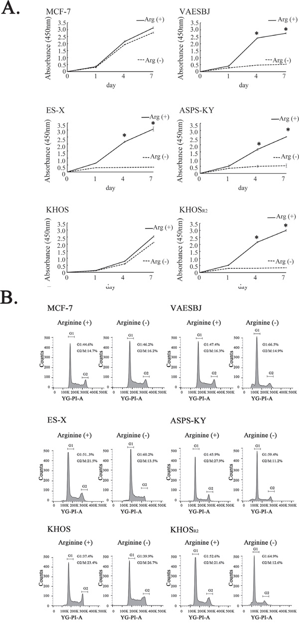 Effects of arginine deprivation on cellular proliferation and the cell cycle in MCF-7 cells and five sarcoma cell lines.