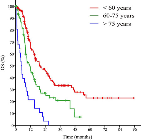 Survival curves of patients in the primary cohort based on the advanced age stratification.