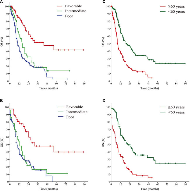 Survival curves of the primary cohort based on the Risk status (A), Age (C); and the validation cohort according to Risk status (B), Age (D).