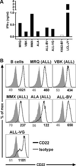 Recognition of B-cell malignancies by T-cell clone 9D4.