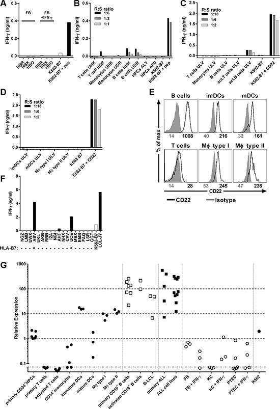 B-cell-restricted reactivity profile of T-cell clone 9D4.