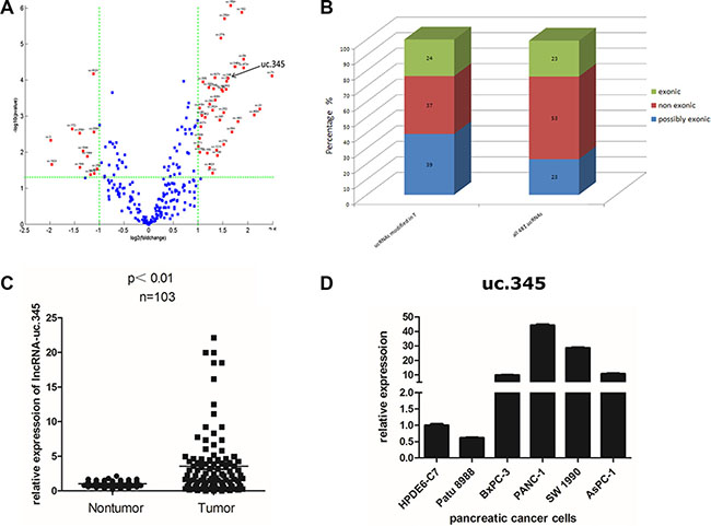 uc.345 is up-regulated in PC tissue.