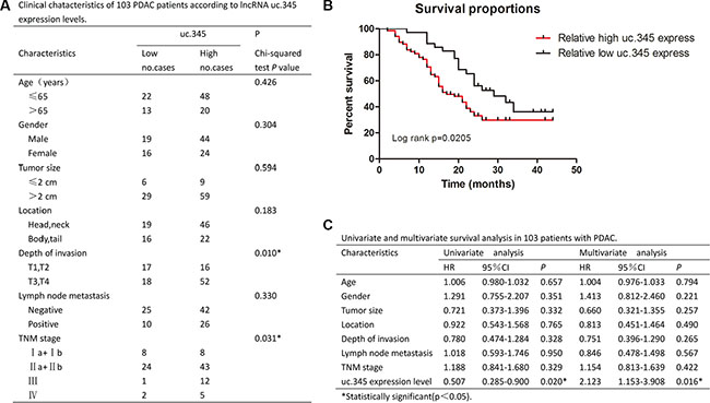 uc.345 is an independent prognostic factor to predict overall survival.