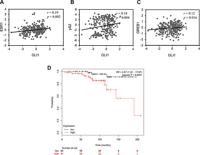GLI1 expression positively correlates with the expression of ESR1 and its target genes and is a negative prognostic marker in breast cancer.
