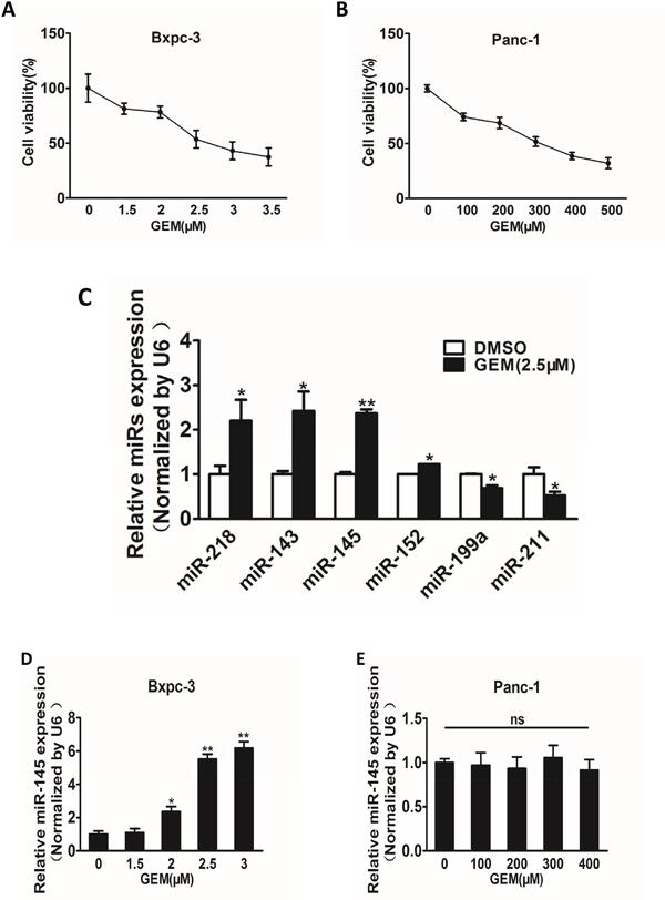 Gemcitabine treatment induces miR-145 up-regulation in gemcitabine-sensitive pancreatic adenocarcinoma cells.