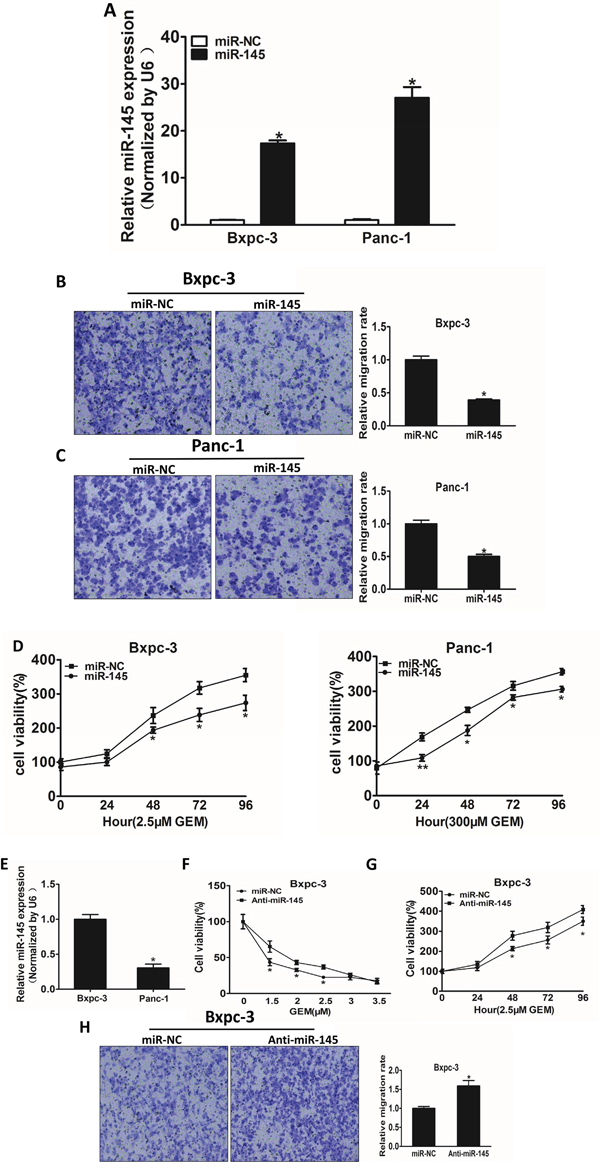 MiR-145 over-expression attenuates cell migration and enhances gemcitabine chemosensitivity in pancreatic adenocarcinoma cells.