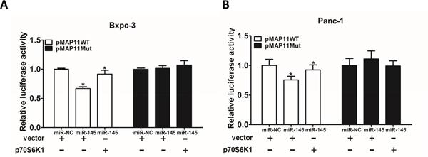 MiR-145 inhibits VEGF transcriptional activation through targeting p70S6K1 in pancreatic adenocarcinoma cells.