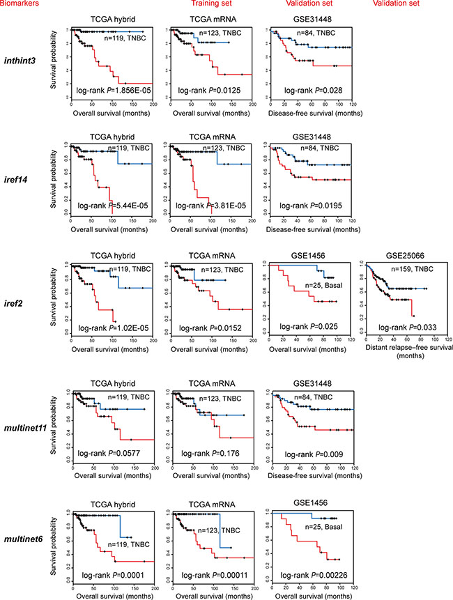 Independent validation of the subnetwork biomarkers obtained from TCGA.