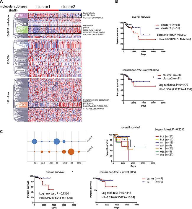 Survival related tumor stratification.