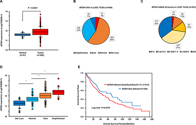 Clinical significance of MTDH expression in lung SCC based on TCGA database.