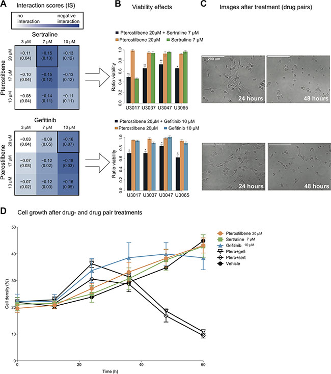 Combination of pterostilbene with sertraline or gefitinib suppresses glioma cell growth.