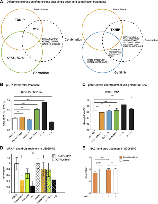 Transcriptional profiling after treatment reveals differentially expressed genes in response to PS and PG combinations.