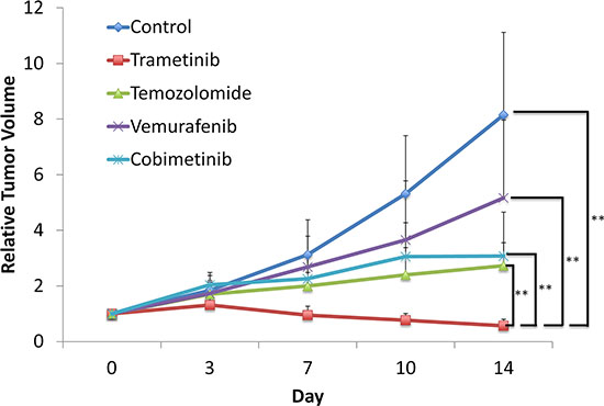 Trametinib (TRA) was the most effective agent against the melanoma PDOX model.