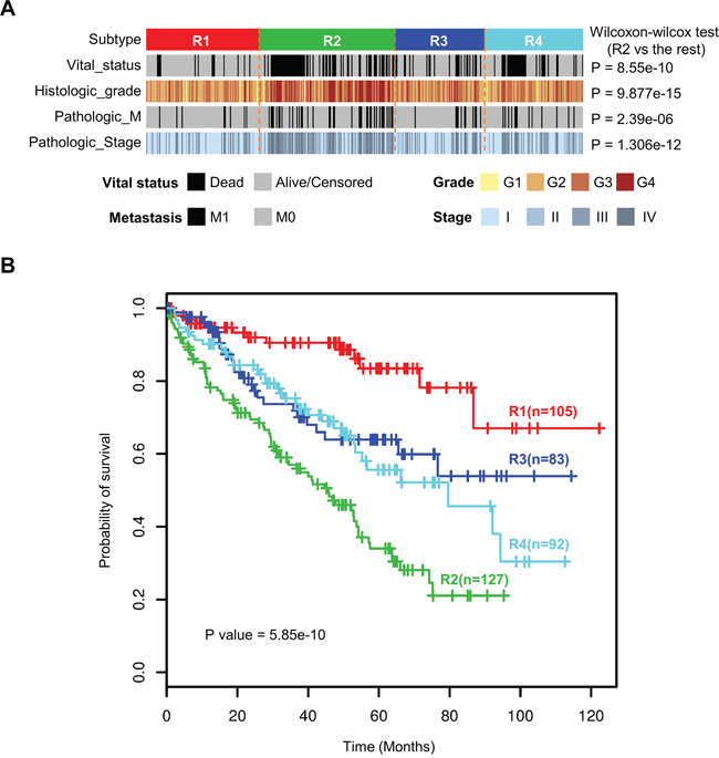 Four integrated transcriptomic subtypes were associated with different clinicopathological features and overall survival.