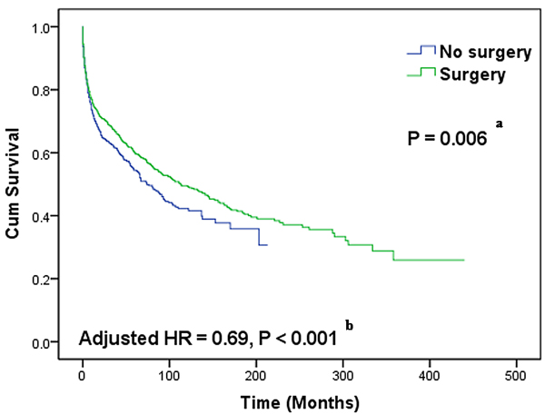 Kaplan-Meier curves of overall survival differences between patients with and without surgical intervention.