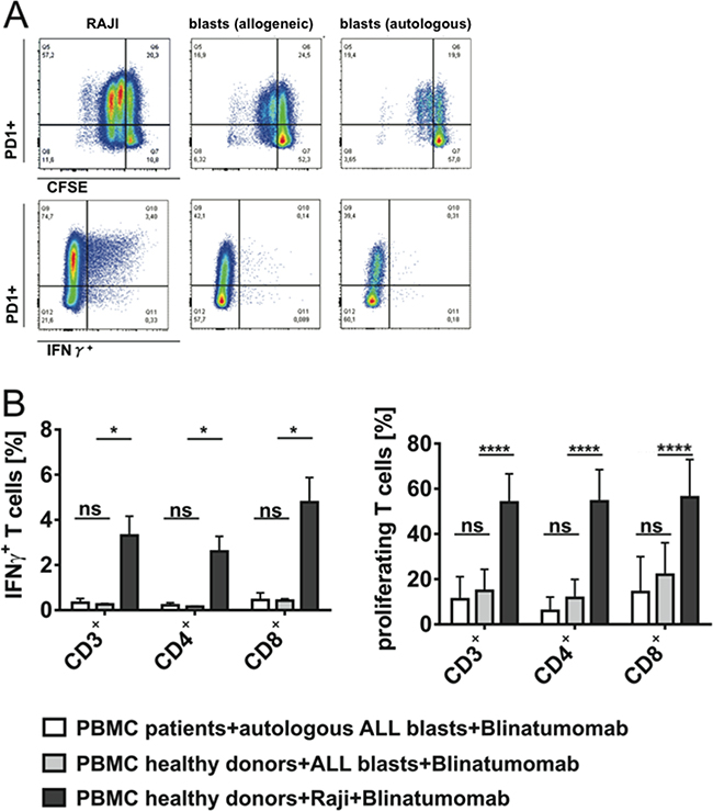 Target cell-dependent proliferation and IFN-γ secretion of T cells under stimulation with Blinatumomab.