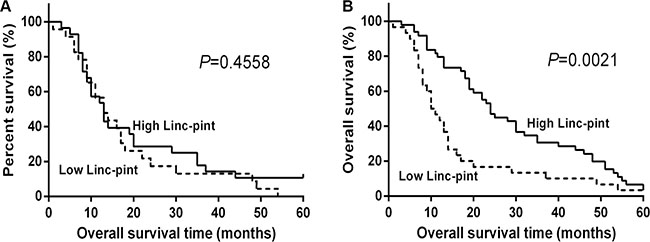 Low tissue Linc-pint levels are associated with a worse prognosis of PCa patients.