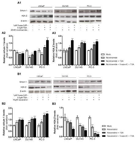 Pharmacological inhibition or activation of sirtuin 1 promotes H2A.Z up- or downregulation.
