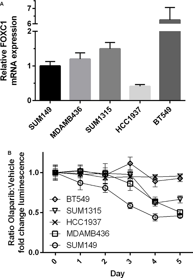 BRCA1-mutant cell line intrinsic FOXC1 level associated with PARPi sensitivity.