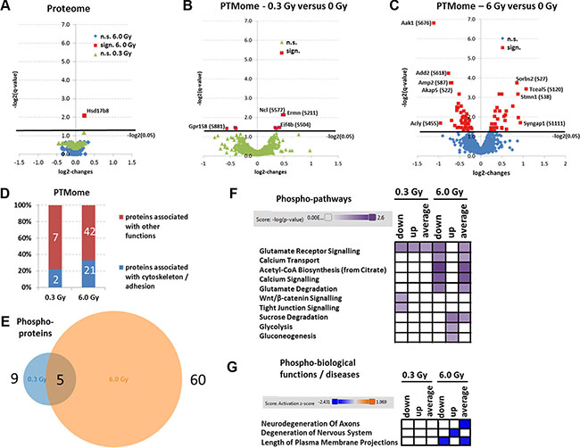 Analysis of mass spectrometry-based proteomics and signalling pathways of deregulated phosphoproteins.