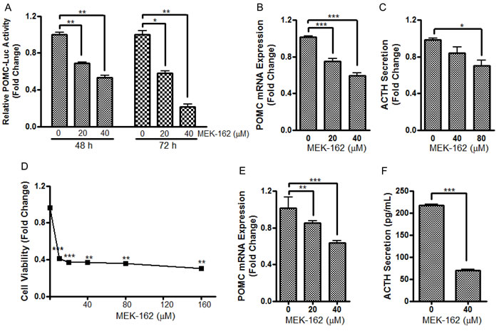 MEK-162 treatment reduces POMC transcription and ACTH secretion in murine and human pituitary corticotroph tumor cells.