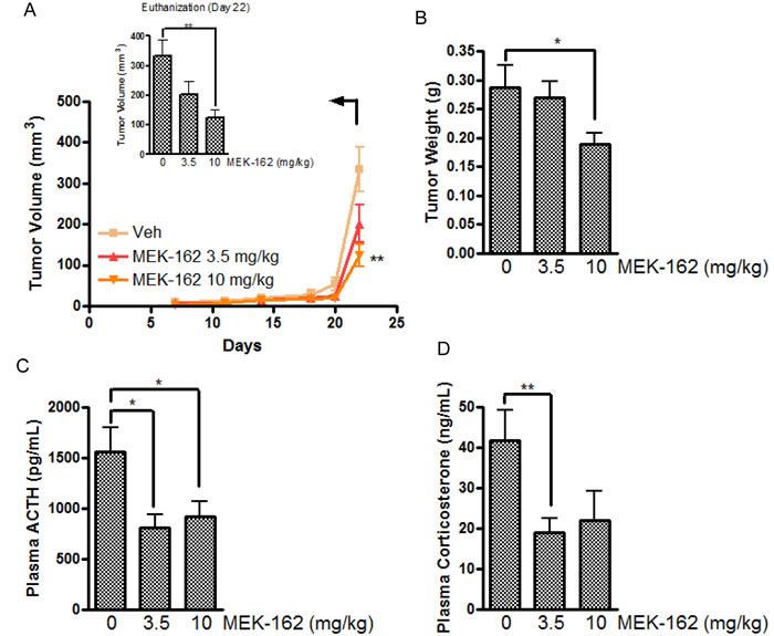 The inhibitory effect of MEK-162 on murine corticotroph tumors