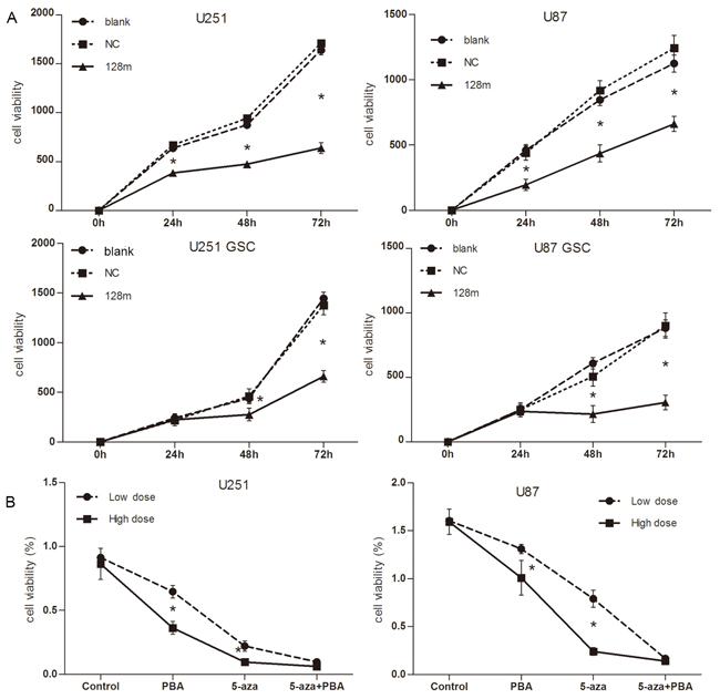 miR128-1 overexpression suppressed cell proliferation in vitro.