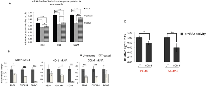 qRT PCR analysis of NRF2 and its substrates reveal downregulation of NRF2, HO-1 and GCLM mRNA expression following treatment with targeted immunotherapeutic agents.