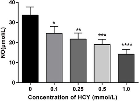 Effect of different doses (0, 0.1, 0.25, 0.5 and l.0 mmol/L) of HCY on the release of NO of HCAECs.