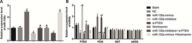 Effects of different doses (0, 0.1, 0.25, 0.5 and l.0 mmol/L) of HCY on the mRNA expressions of miR-130 and key molecules of PI3K-Akt-eNOS signaling pathway in HCAECs detected by qRT-PCR.