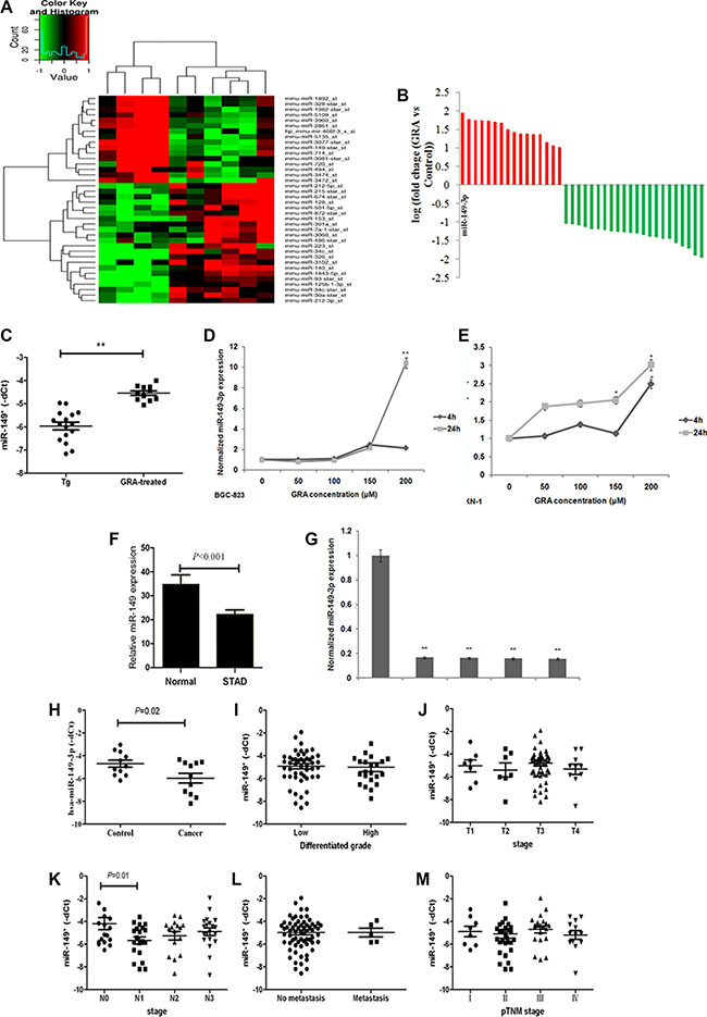 miR-149-3p was upregulated after GRA administration, and frequently downregulated in GC tissues and cells.