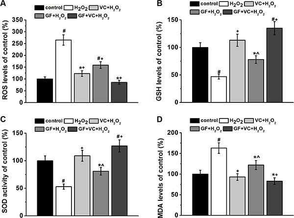 GF, VC and GS + VE successfully attenuated 0.2 mM H2O2-induced oxidative stress in BM-MSCs.