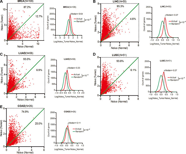 Gene expression noise was increased in human cancers.